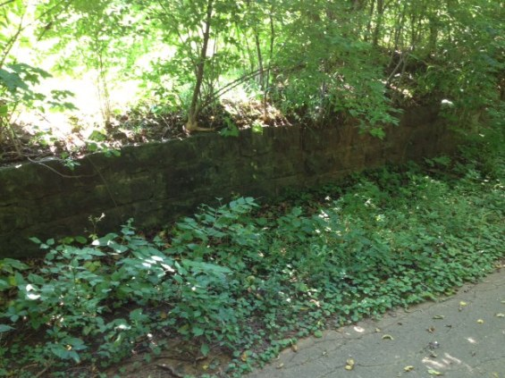 rear-wall